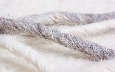 Wolle – ein Ausflug in die Geschichte